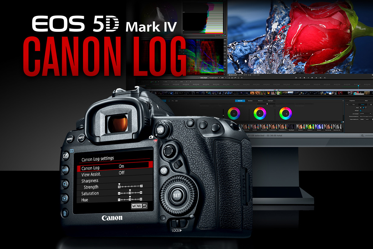 Canon Log and LUTs